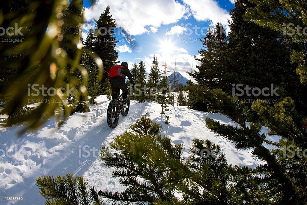 Fat Bike Ride stock photo