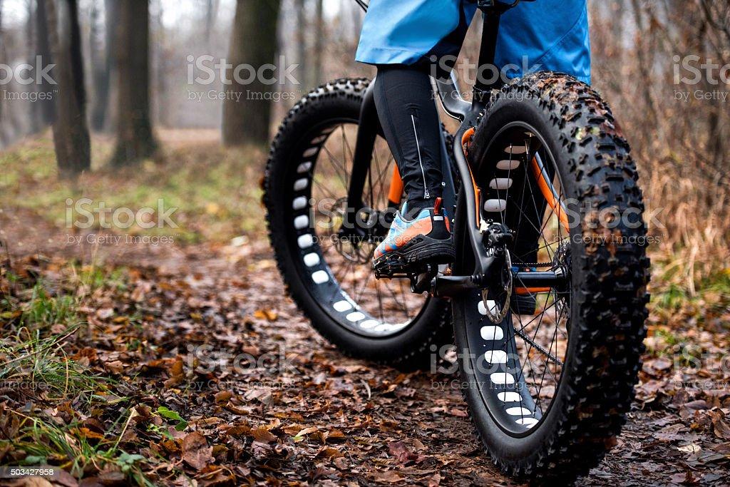 Fat bike tyres stock photo