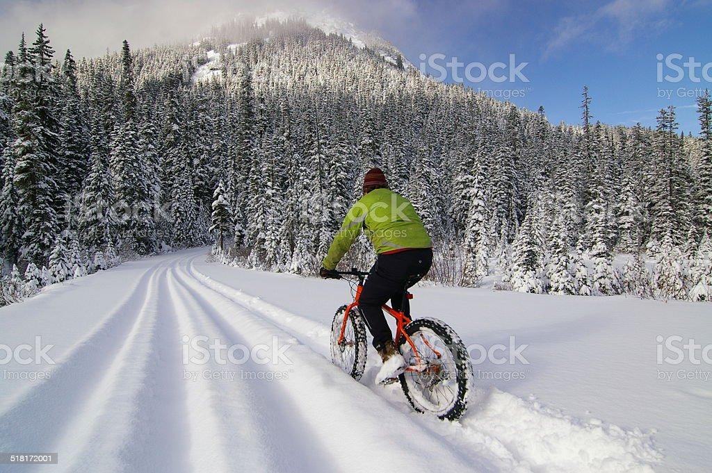 Fat biking in deep fresh snow stock photo
