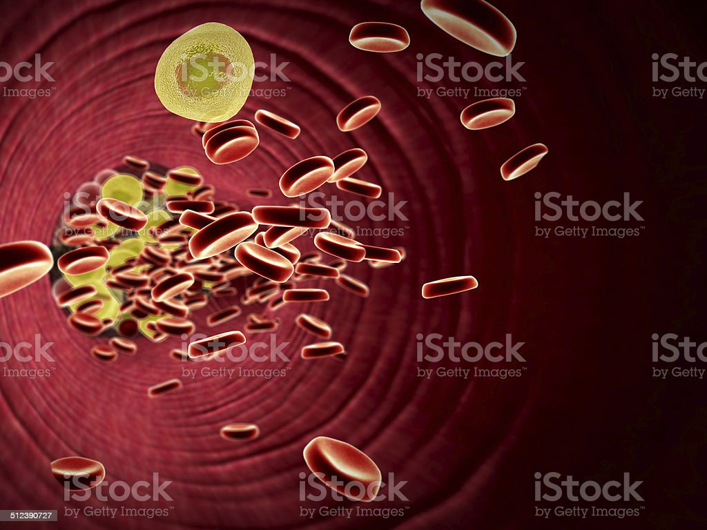 fat cell,  erythrocyte stock photo