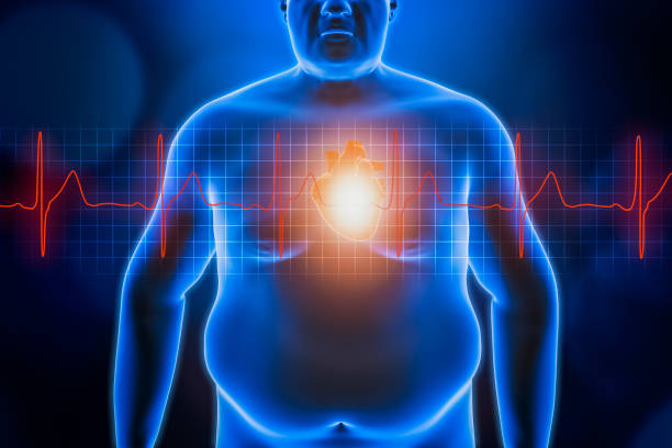 Fat or obese man chest body with heart and red ekg heartbeat curve. Blue futuristic hologram 3d rendering illustration. Obesity, healthcare, medical, wellness, heart disease concepts. stock photo