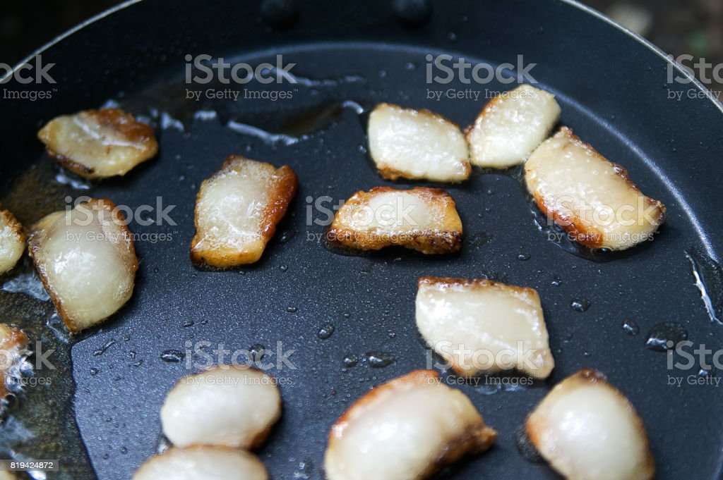 Fat sputtering in the frying pan stock photo