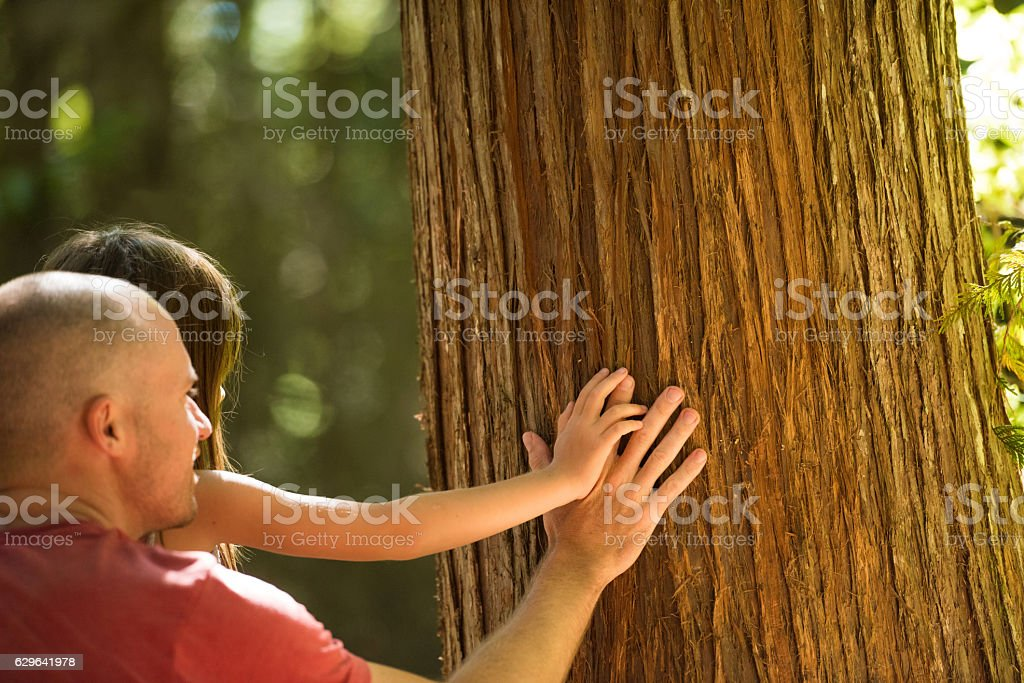 Father and child bonding in nature stock photo