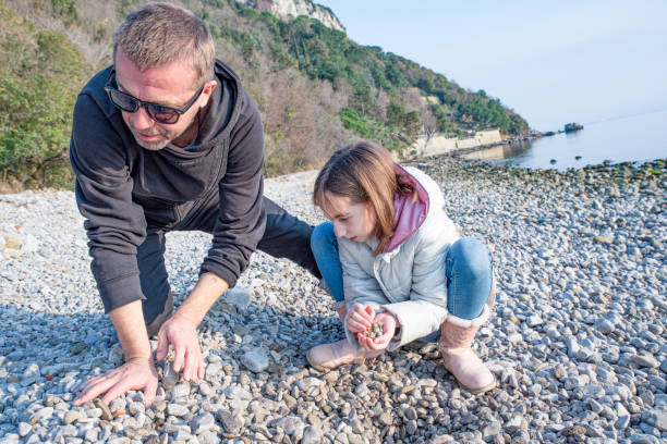 father and daughter enjoy sunny winter day on the adriatic coast searching for shells, trieste coast, italy - little girl picking up sea shells at the beach stock pictures, royalty-free photos & images