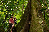Father and daughter looking up at large tree. Man carrying girl in tropical rainforest. They are exploring forest.