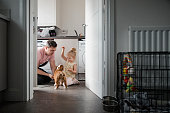 Father And Daughter Playing With Their Pet Dog