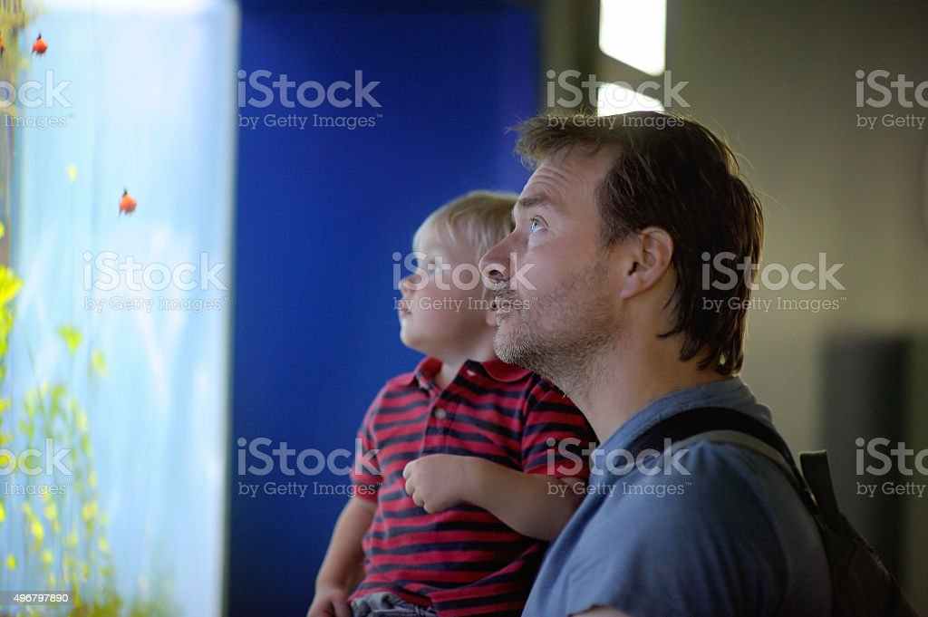 Father and his son enjoying views of underwater life stock photo