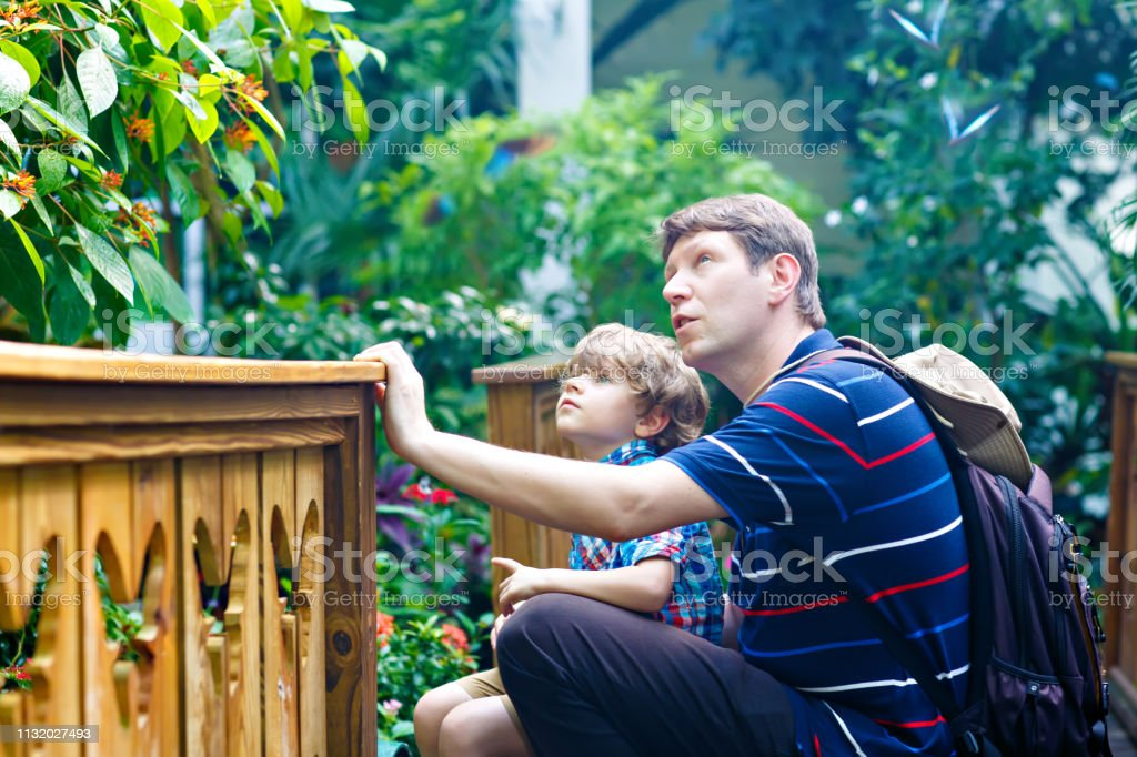 Vader en voorschoolse Kid Boy ontdekken bloemen, planten en vlinders in Botanic Garden. Familie, jonge man en zoon geïnteresseerd in de biologie. Actieve onderwijs vrije tijd met kleuter kind in Museum foto