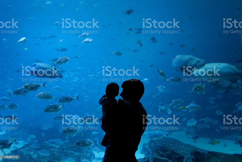 Father and Son at Aquarium in Atlanta Georgia stock photo
