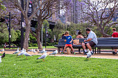 Sydney, Australia - October 20, 2015 : A father and son is bonding at the park which is in the city of Sydney, Australia.