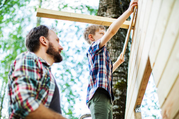 Father and son building tree house at backyard stock photo