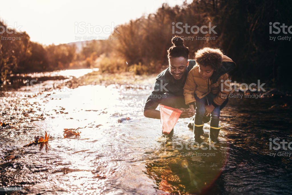 Father and son catching fish with fishing net in river stock photo