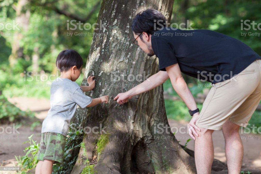 父と息子の探査 ストックフォト