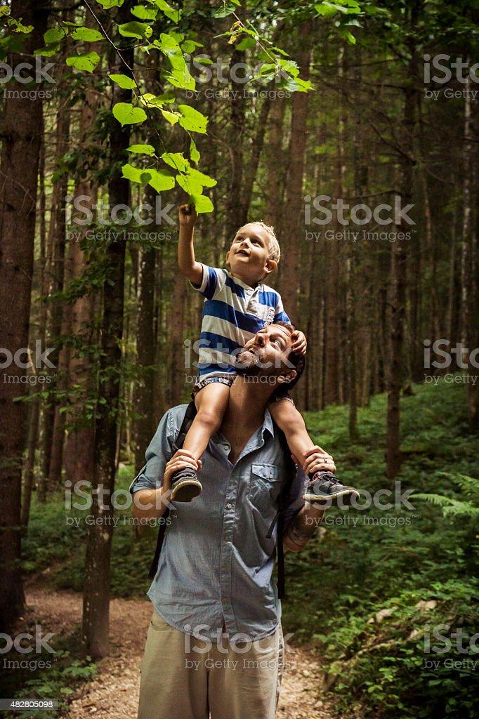 Vater und Sohn die Erkundung der Natur – Foto