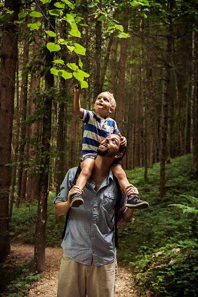 Father and Son Exploring Nature Father with three year old son on shoulders hiking through the forest and exploring the wonders of nature davelongmedia stock pictures, royalty-free photos & images