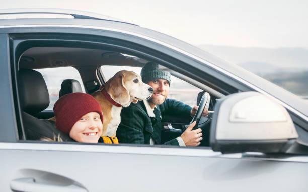Vater und Sohn Familie reisen mit dem Auto mit Beagle Hund. Sie lächeln zur Kamera, die mit Sicherheitsgurten befestigt ist. – Foto