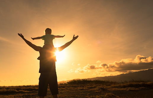 997711042 istock photo Father and son feeling free with arms up 1178431929