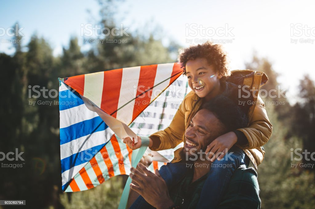 Father and son having fun flying kite on sunny day stock photo