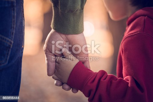 istock Father and son holding hands in park 665856444