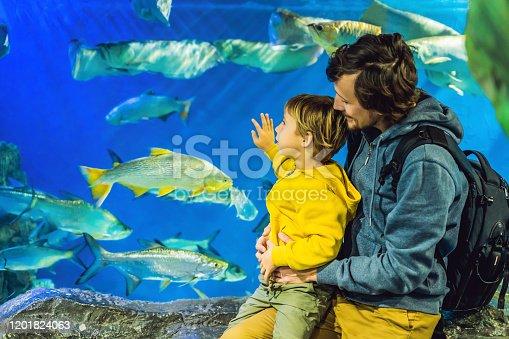 istock Father and son look at the fish in the aquarium in oceanarium 1201824063