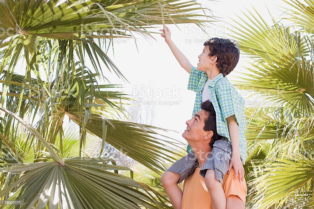 Father and son looking at tree royalty-free 스톡 사진