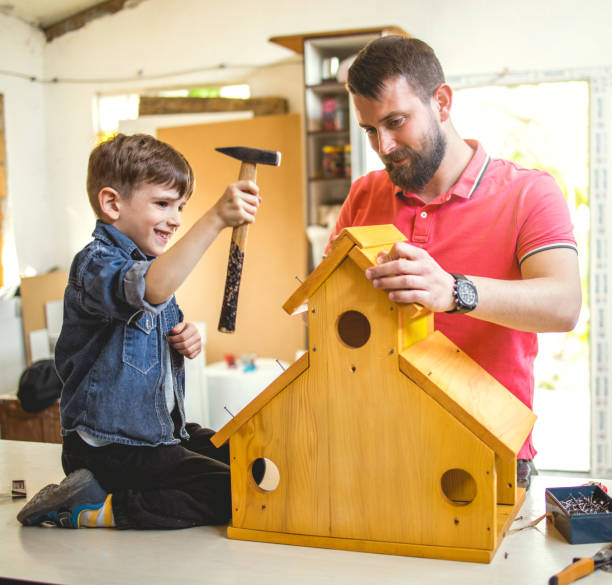 Father and Son Making a Birdhouse stock photo