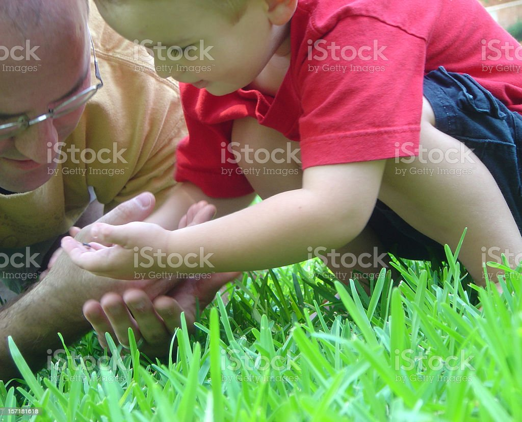 Father And Son Observing Nature Together royalty-free stock photo