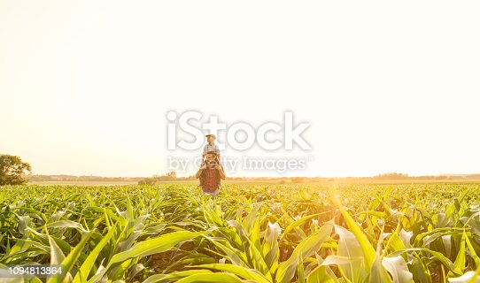 1094815168 istock photo Father and son on corn field 1094813864