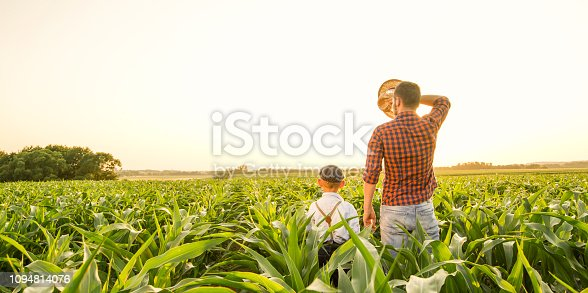 1094815168 istock photo Father and son on corn field 1094814076