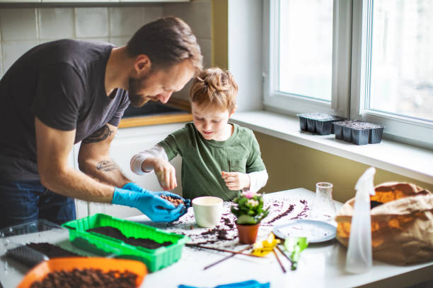 Father and son planting at home stock photo