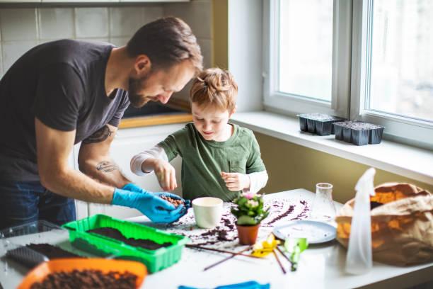 Vater und Sohn zu Hause pflanzen – Foto