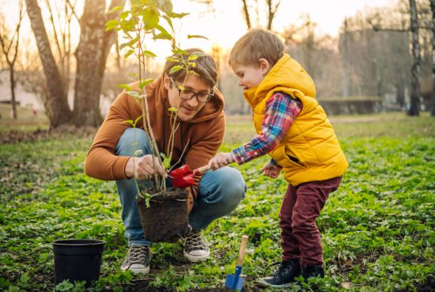 Vater und Sohn pflanzen Baum am Arbor-Tag im Frühling – Foto