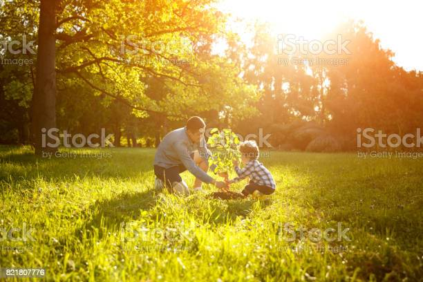 Father and son planting tree picture id821807776?b=1&k=6&m=821807776&s=612x612&h=tdkobhqddyyt1hn0cslrt2f8horaoeqbkys2h9 tuhq=