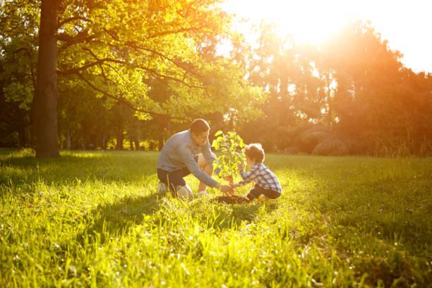 father and son planting tree - piantare foto e immagini stock