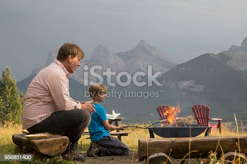 They are in a meadow with the Three Sisters Mountains behind them, Canmore,Alberta