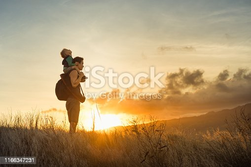 Adventurous father and son standing on a mountain to looking at the beautiful view.