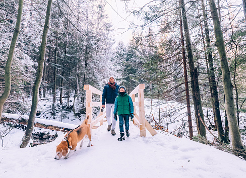 istock Father and son walk with dog in snow forest 650280468