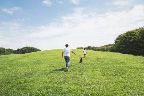 Cão de passeio do pai e do filho junto no parque - foto de acervo
