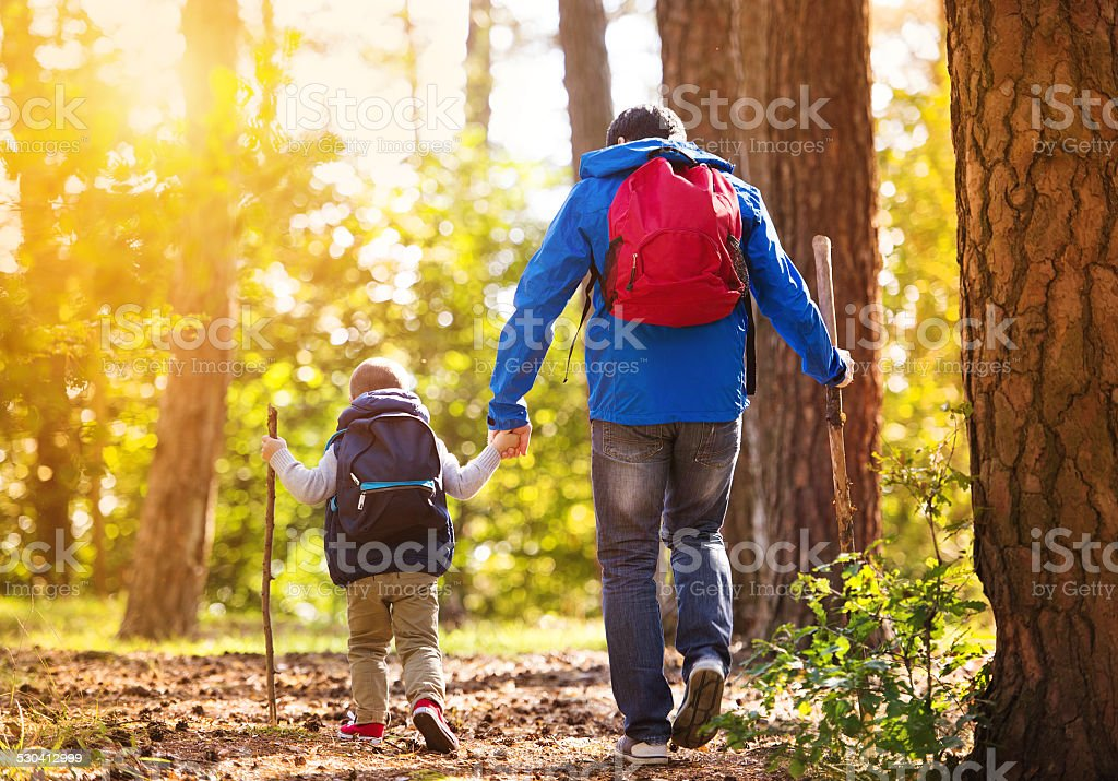 Father and son walking in autumn forest stock photo