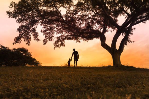 父と息子の公園の散歩 ストックフォト
