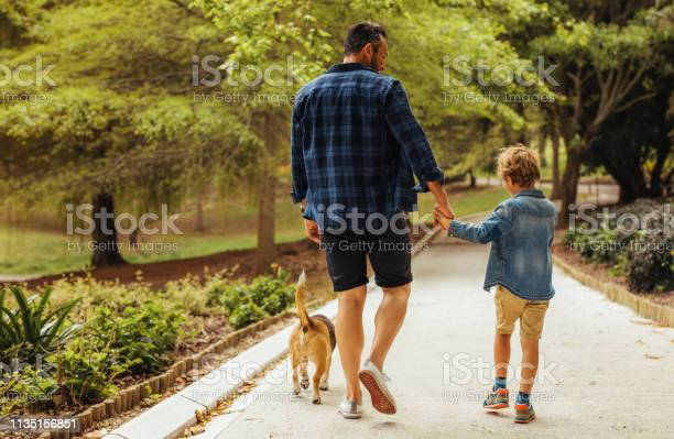 Father and son walking with a dog in the park picture id1135156851?b=1&k=6&m=1135156851&s=612x612&h=uttmqthri1zg0hpc 8iz wud5nxujdn72nh kquauc0=