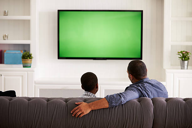 Father and son watching TV at home together, back view stock photo