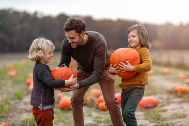 Father and sons in pumpkin patch field stock photo