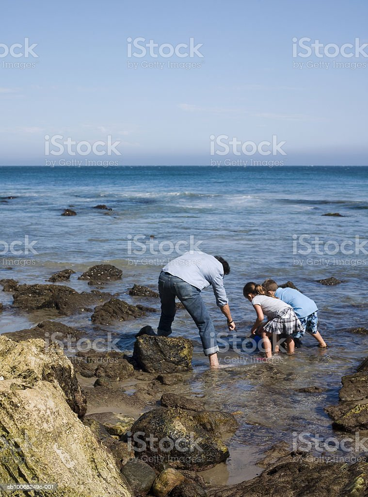 Father and two children (6-7) exploring seashore royalty free stockfoto
