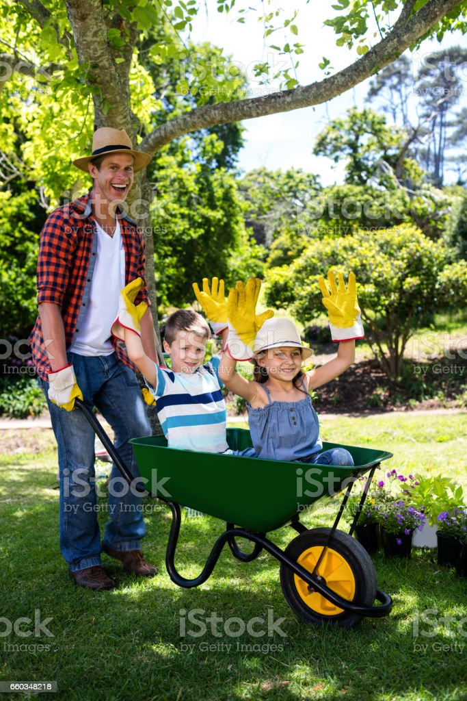 Father Carrying His Son And Daughter In A Wheelbarrow Stock