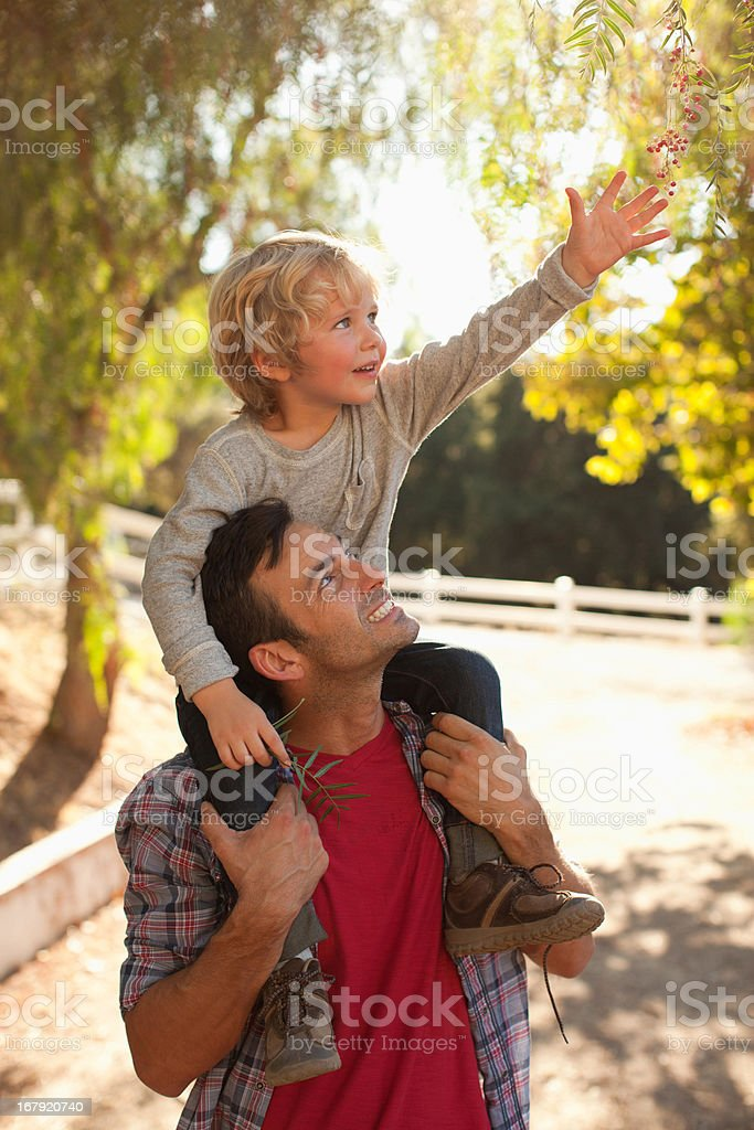 Father carrying son on shoulders stock photo