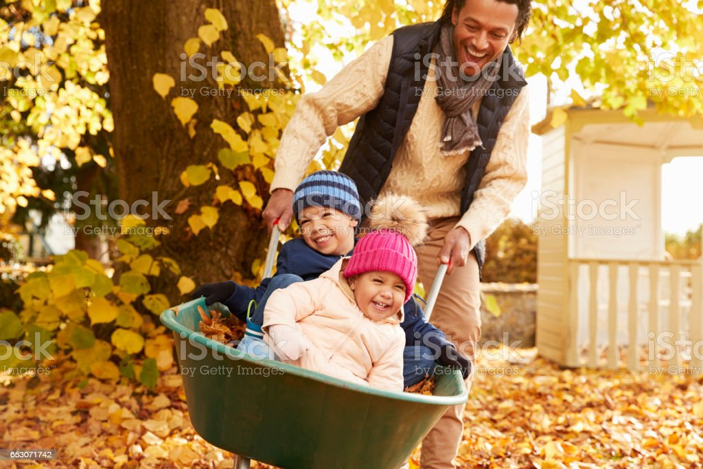 Father In Autumn Garden Gives Children Ride In Wheelbarrow stock photo