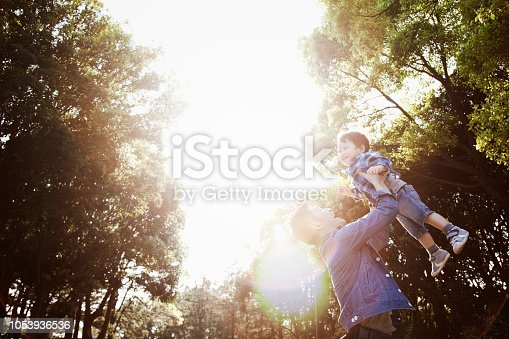 istock Father lifting his son high up in the air in the park 1053936536