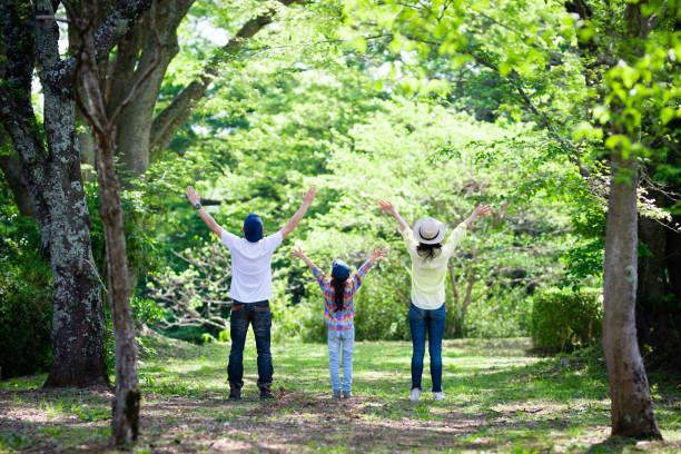 padre, madre e figlia aprono le braccia nel bosco - forest bathing foto e immagini stock