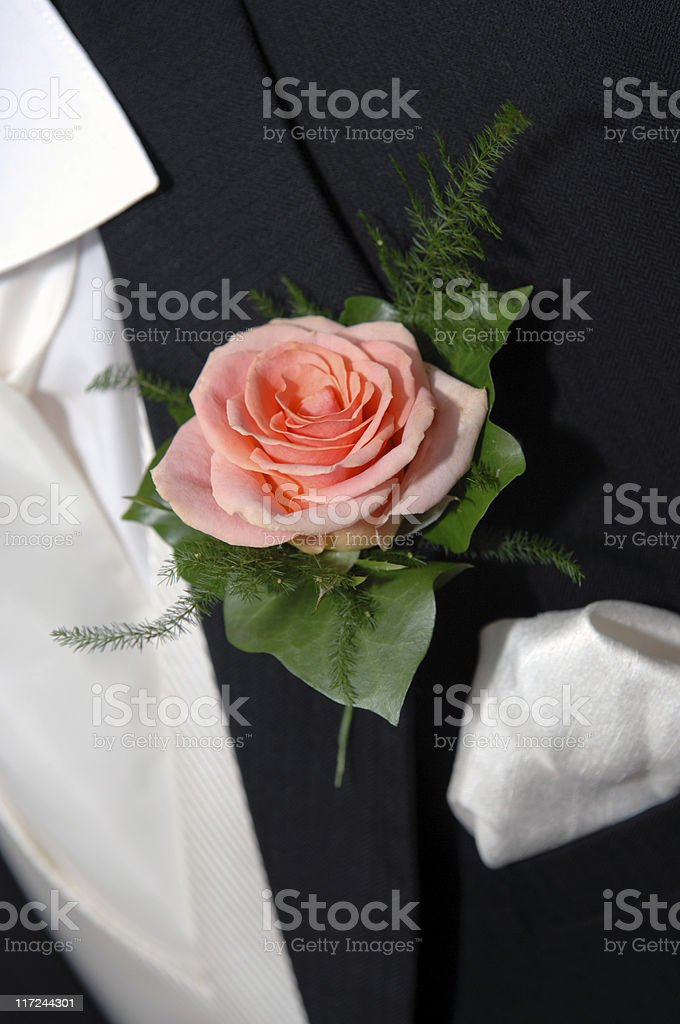 Father of the Bride royalty-free stock photo